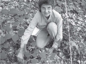 pereson examining leaves in forest